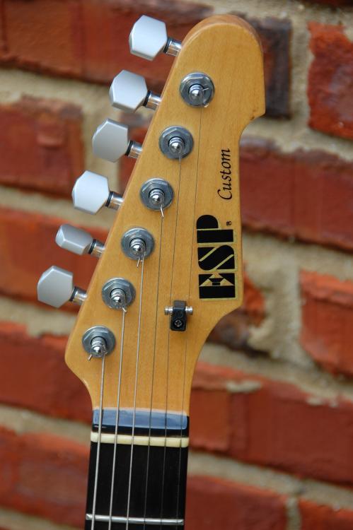 Esp Ltd Guitar Serial Number Lookup - takealternative