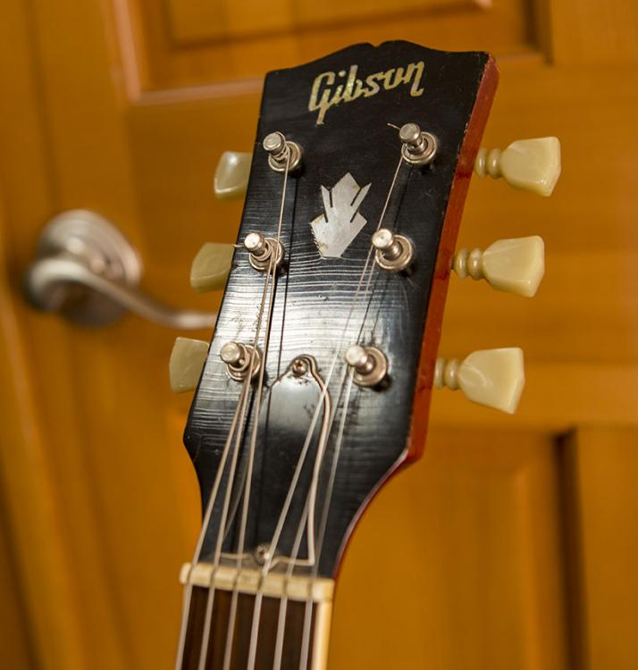 Gibby14.jpg